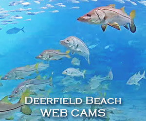 Deerfield Beach Pier Underwater WebCam
